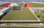 Economic Board introduceert Vrijlanders