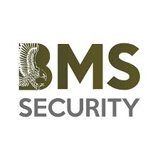 BMS Security