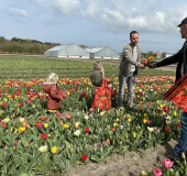 Landelijke aandacht voor bloeiende Bollenstreek